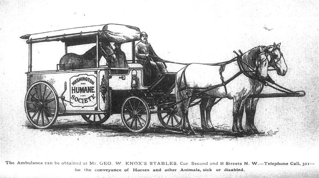 1892 Washington Humane Society Ambulance