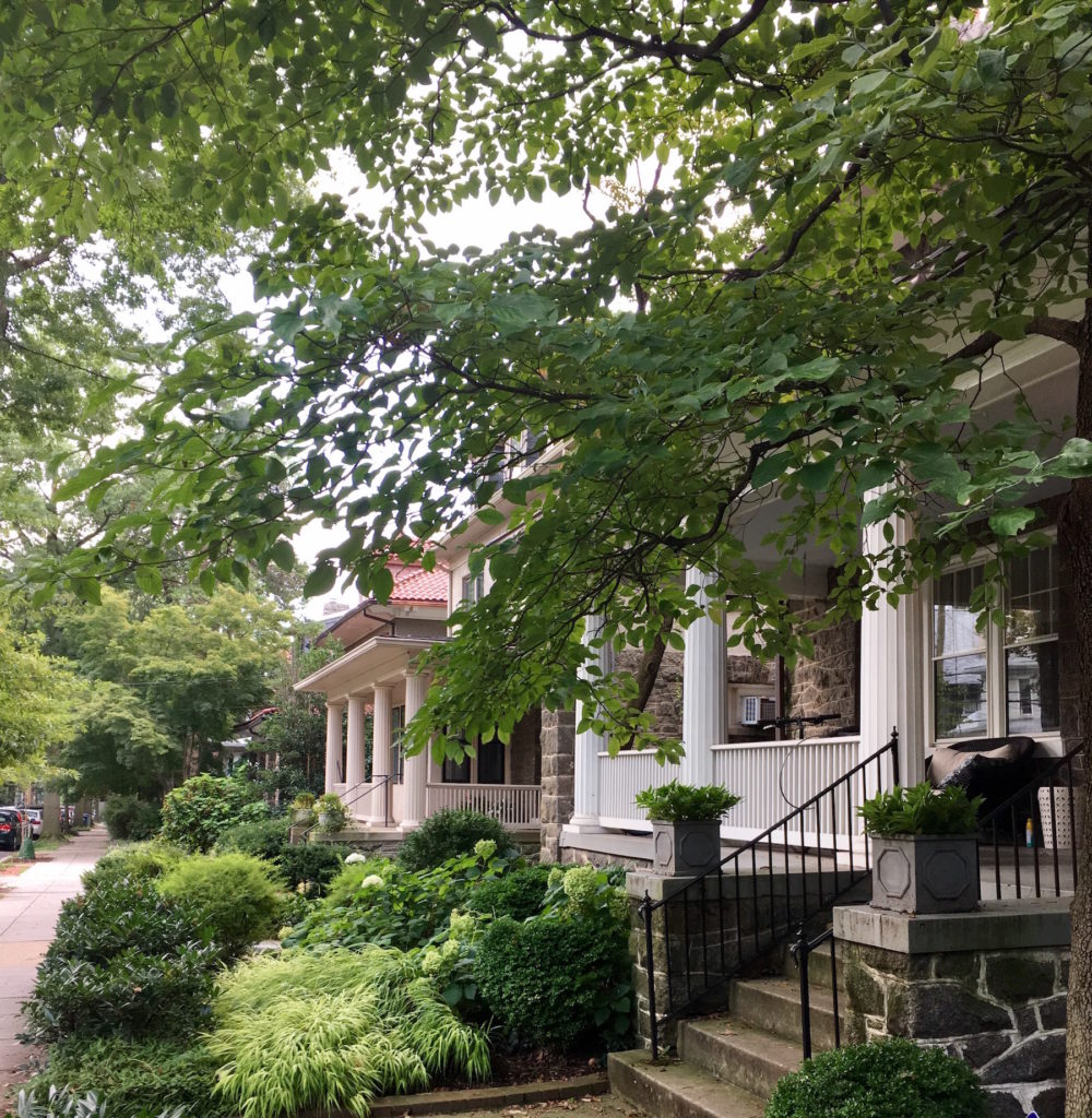 Houses on Macomb Street with porches and front yard plantings